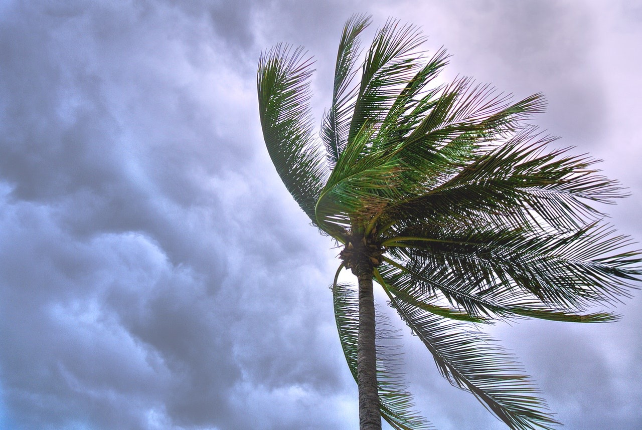 Flood Insurance Coverage: Will Homeowners Insurance Protect You This Hurricane Season?